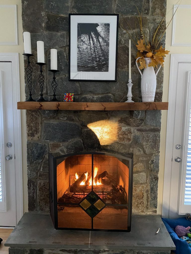 Fireplace with flower pot on mantle and picture above, with a glass fireplace door in front of the fire.